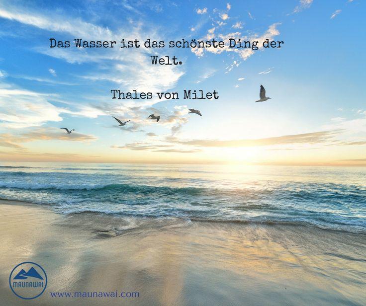 """""""Nur Wasser kann eine Wüste verwandeln. Wasser ist Leben.  Liebe ist lebendiges Wasser.""""  Phil Bosmans"""
