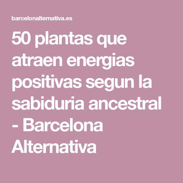 50 plantas que atraen energias positivas segun la sabiduria ancestral - Barcelona Alternativa