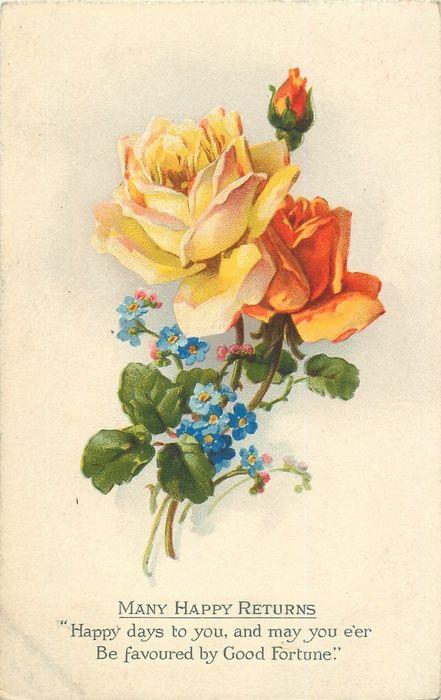 rosas amarillo-naranja con flores de color azul