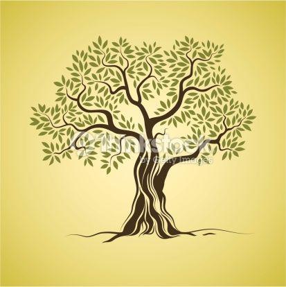 Arte vettoriale : Olive tree