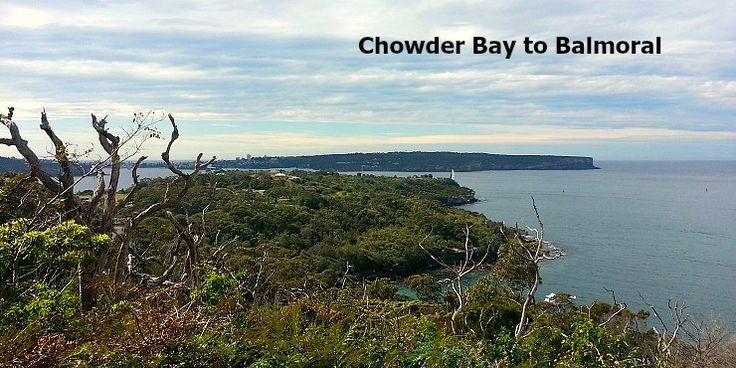 The Chowder Bay to Balmoral Walk is a beautiful hike through Sydney's north…