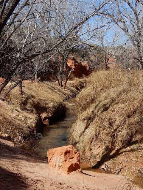 Actually part of The Red River @Prairie Town Fork in Palo Duro Canyon State Park, Canyon, Texas