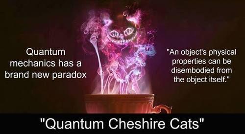 Il gatto del Cheshire inventato da Lewis Carrol esiste davvero!