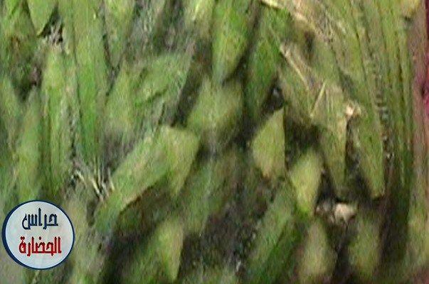 طريقة تخزين الباميه الخضراء وتجهيزها بالصور والخطوات سيفجردز وصفات مطبخ Okra Vegetables Corn