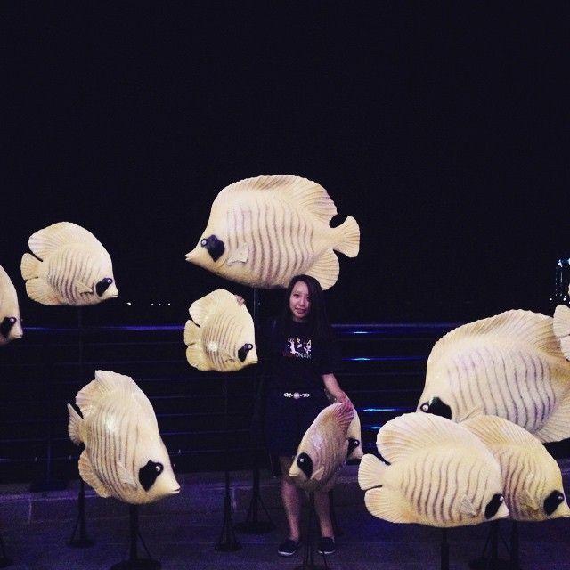 Fish at night 💛 #instadaily #photooftheday #pictureoftheday #cinema #like4like…