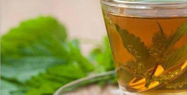 Se sofre de diabetes, precisa ler isto: tomar 3 xícaras do chá desta planta vai normalizar a sua glicose | Cura pela Natureza.com.br