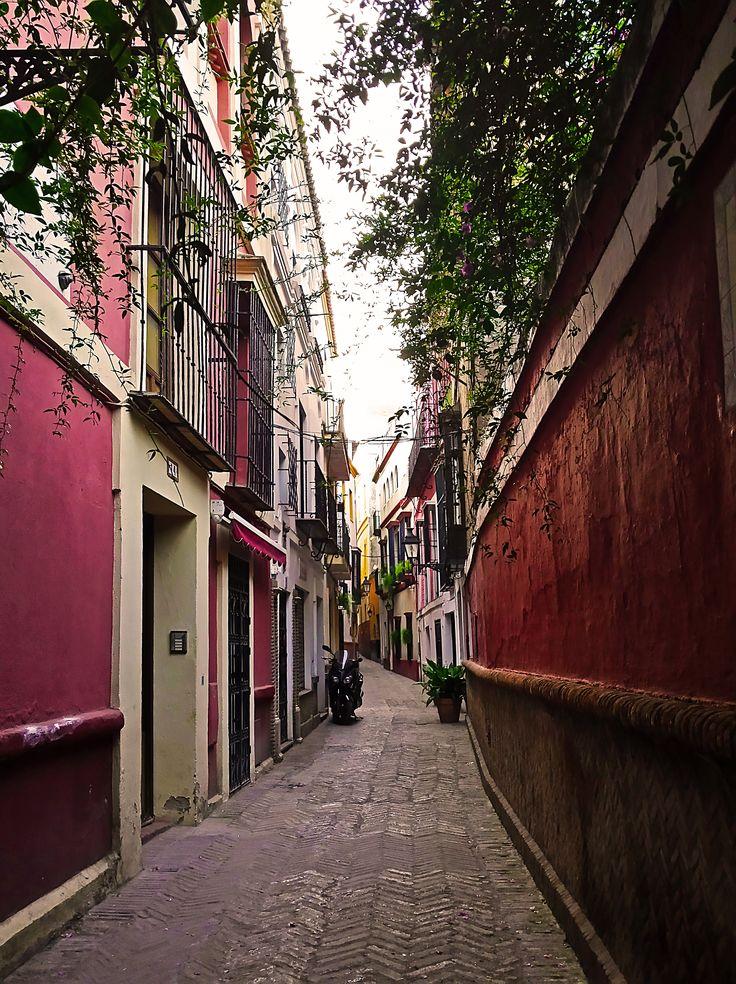 Calle Pimienta. Barrio de Santa Cruz de Sevilla.  #santacruz #sevilla #walkingtours #andaluciatours #andalusiaguidedtours