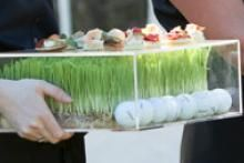 1000 images about food presentation on pinterest for Perspex canape trays