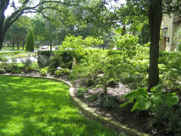 Landscaping Under Elm Trees : Landscaping under trees