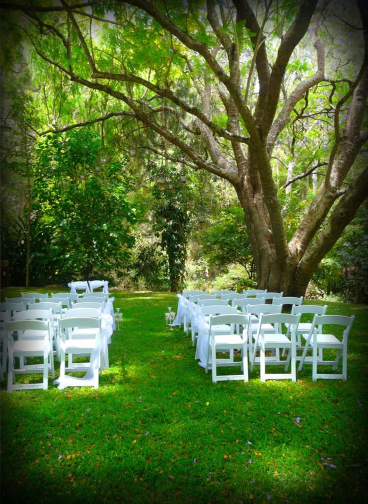 Bundaleer Rainforest Gardens | Wedding Ceremonies in Brisbane