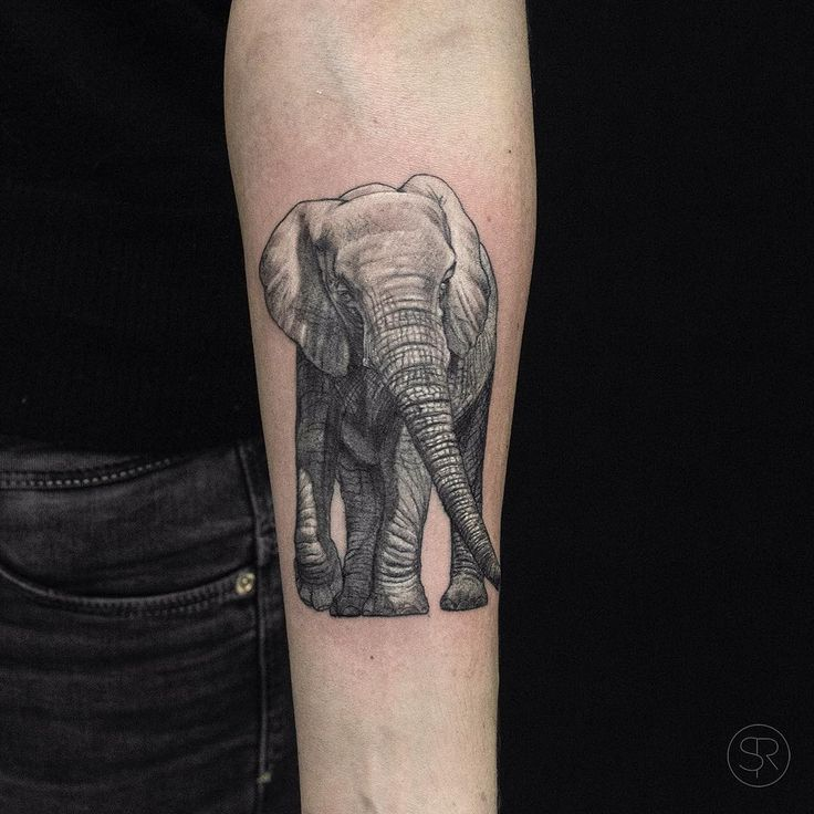 The 25 best elephant tattoo meaning ideas on pinterest for Meaning of elephant tattoo
