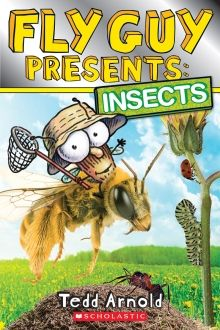 Fly Guy Presents: Insects by Tedd Arnold   http://www.scholastic.ca/books/view/fly-guy-presents-insects