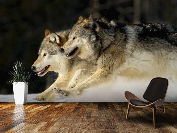 44 Best Wolf Wall Murals Images On Pinterest