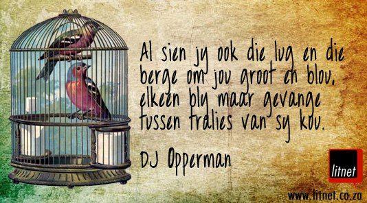 D.J. Opperman