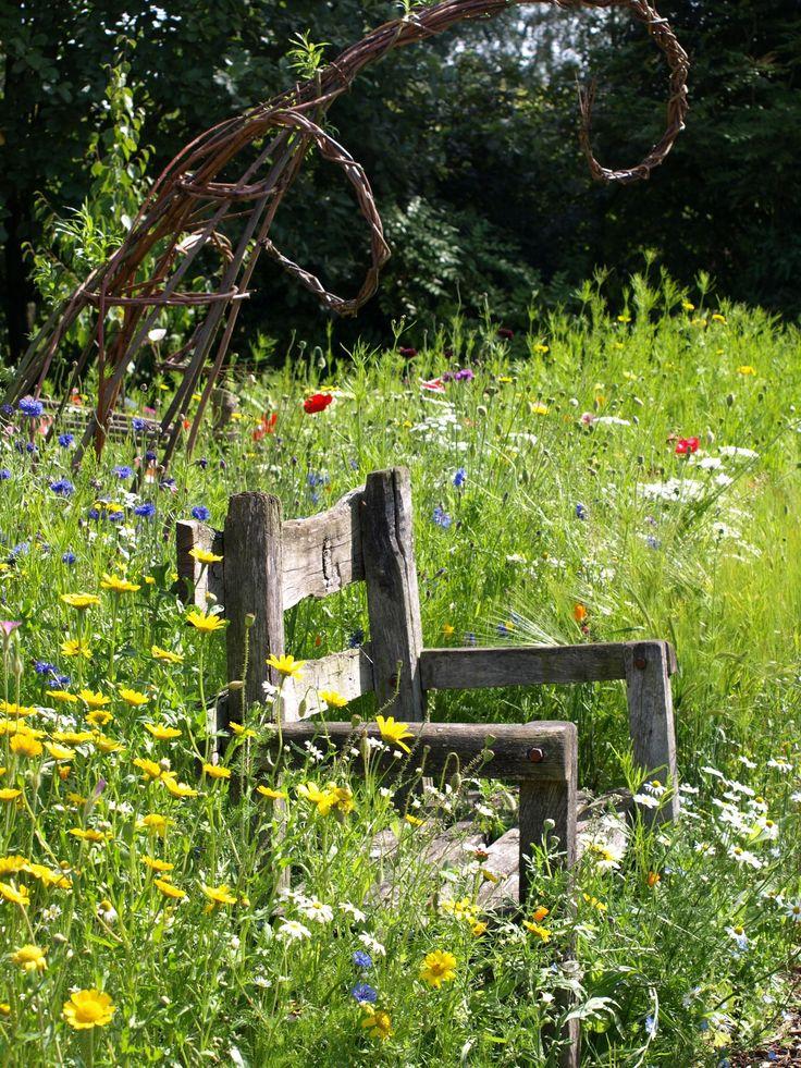 A rustic wooden seat in a wild flower meadow.