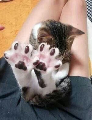Little brown jellybean toes!!