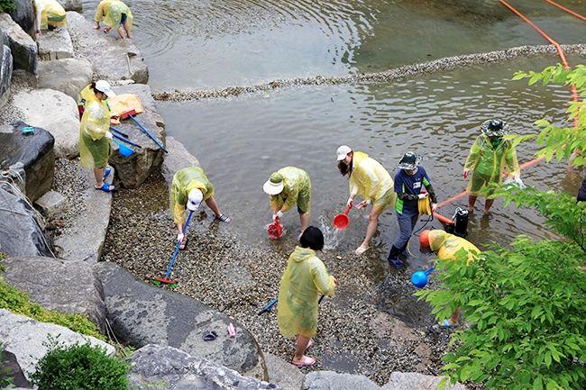 [摂理ニュース]池の掃除004