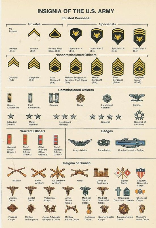 United States military insignia showing the badges and pins that were stitched to the uniforms of different personnel within the United States Army; from Private to General of the Army. This example also shows the pins that would have been worn by others in the army, such as Medics, Military Intelligence, Chaplains, Finance, etc.