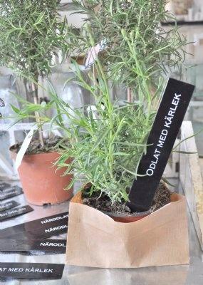 Gör fint i rabatten med snygga odlingspinnar i plåt med olika texter.