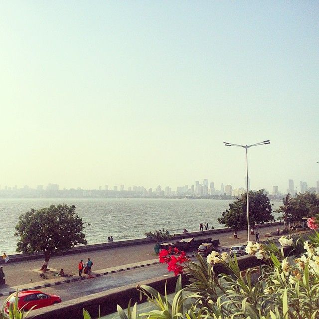 The beautiful view from Havana Gardens | Image Courtesy: Apoorva Chaudhry