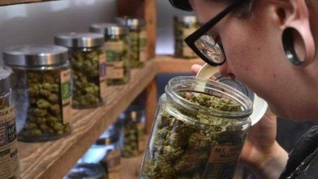 #Uruguayans sign up for state cannabis in world first - Pakistan Today: Pakistan Today Uruguayans sign up for state cannabis in world first…