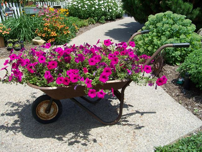 25 Wheelbarrow Planter Ideas For Your Garden