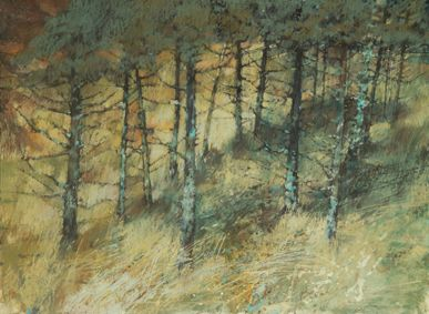 Sarah Bee: Highland Pines with Lichen 32x24 inches pastel. Google Image Result for http://www.orangestreetgallery.co.uk/OLD%2520SITE/web%2520bee%2520roper/SB02.jpg