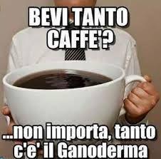 Le speciali proprietà del #Ganoderma unite alla qualità del #CaffèSnep.  Ampia Offerta di #CaffèGanoderma in versione moka, solubile, o cialde/capsule espresso. Registrati Gratis Adesso! Seleziona Cliente.  Codice Invito: 3907844 .   http://www.mysnep.com/iv_registrazione.php Scopri di più: http://www.comedimagrireinsalute.com