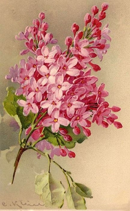 СИРЕНЬ Lilac Painting by Catherine Klein on Etsy ♥•♥•♥ LOVE♥•♥•♥