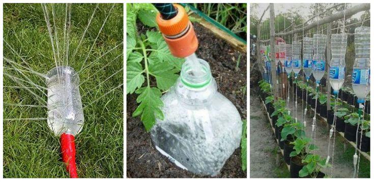 Még biztosan nem próbáltad ezeket a kerti tippeket, amelyekkel könnyebbé teheted a kerti munkákat!