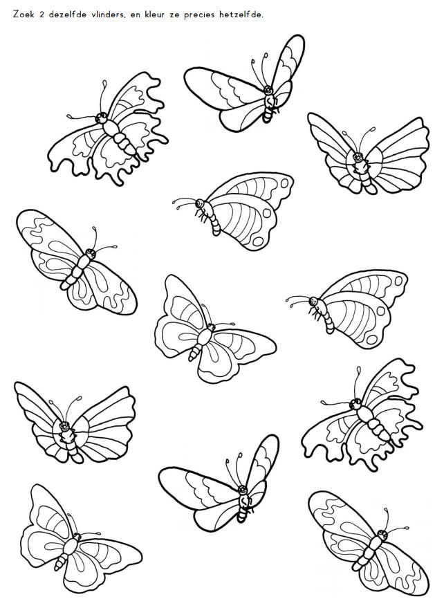 Zoek 2 dezelfde vlinders en kleur ze precies hetzelfde [Juf Sanne]