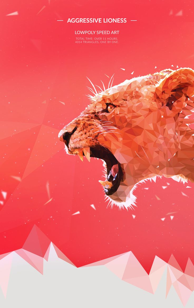 Aggressive Lioness - Low Poly (Speed Art) on Behance