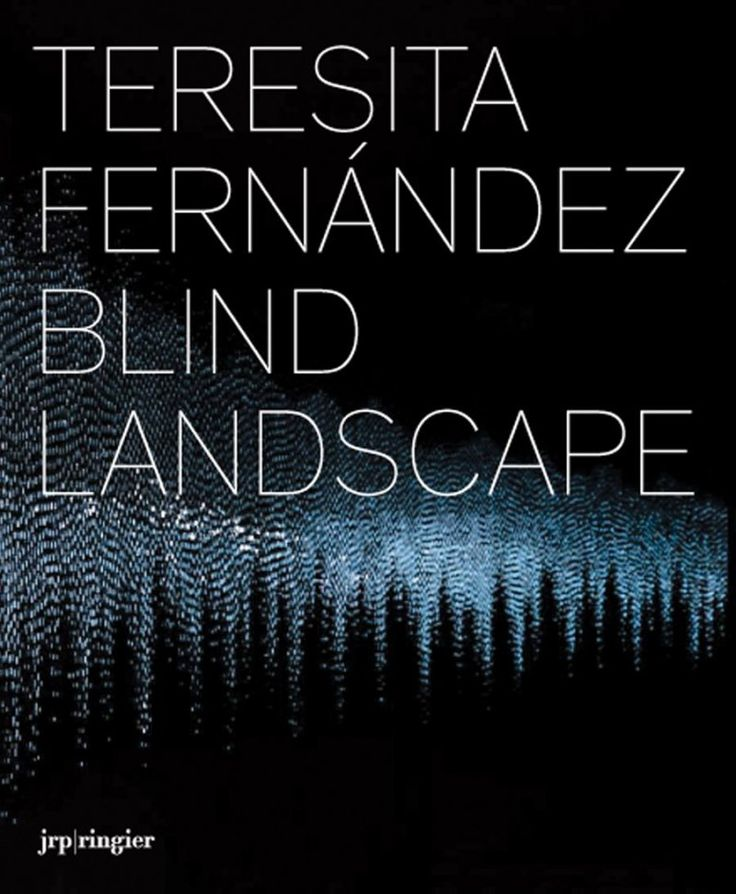 What It Really Takes To Be An Artist MacArthur Genius Teresita Fernandezs Magnificent Commencement Address