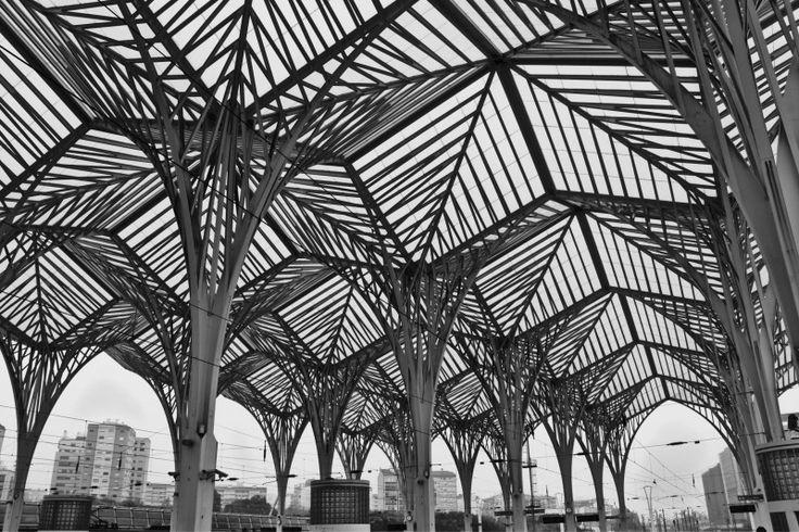 Lisbon, Train Station, Travel Photo - Visual Hunt