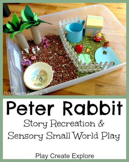 Peter Rabbit Small World Sensory Bin