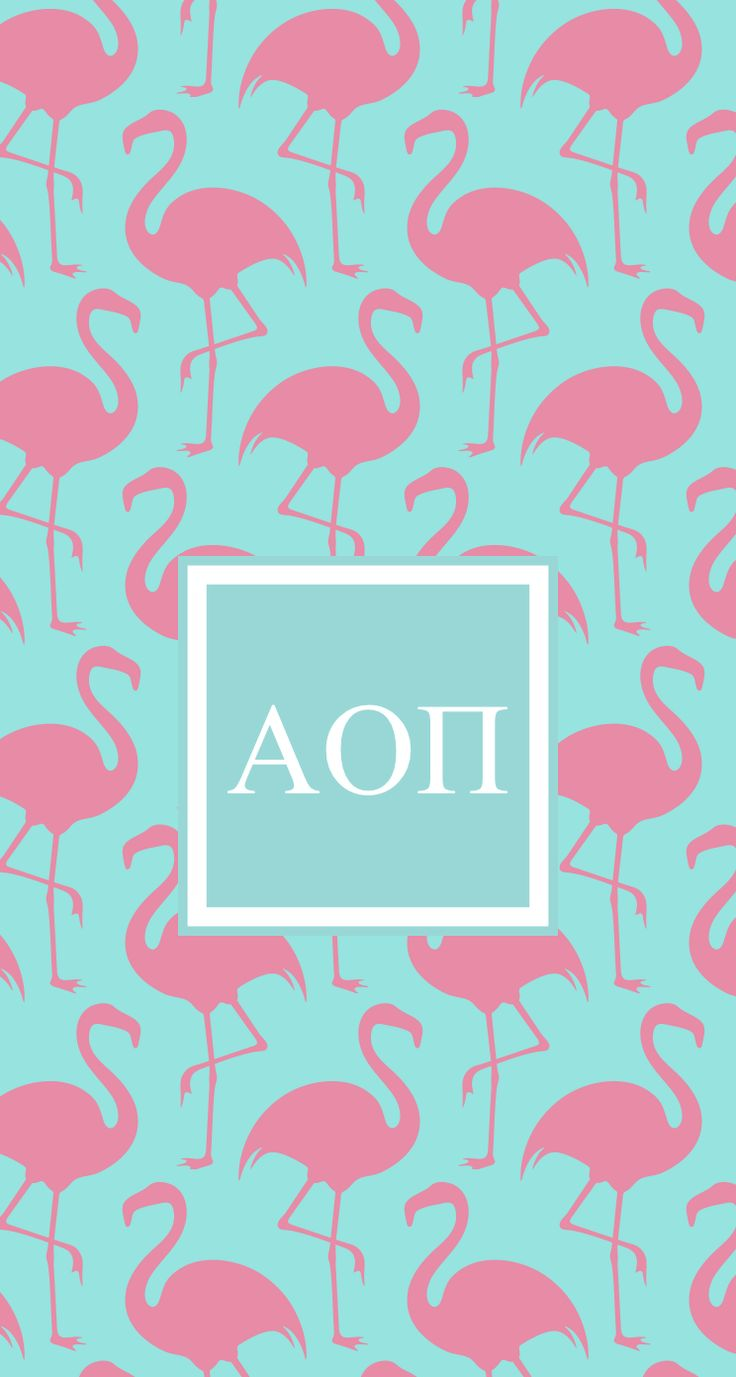 Summer Vibes and AOII! Don't forget to register for formal recruitment at your  college or university!  Go Greek, Go AOII!