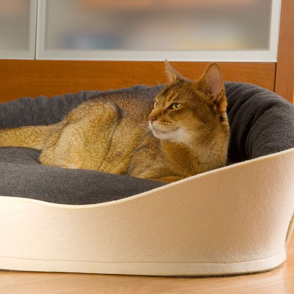 Katzenkörbchen aus Filz, cat basket out of felt, cuccia gatto di feltro