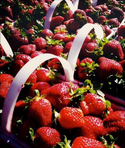 Eating Organic: Food as Medicine for Cancer (VIDEO)