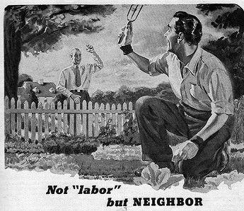A description of the guy next door in the neighbors