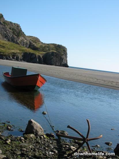 Newfoundland :)