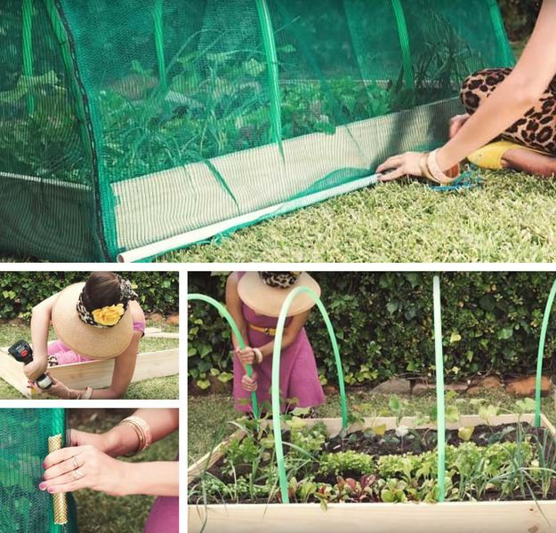 DIY Homemade Greenhouse | Homesteading Hacks Every Homesteader Should Know