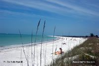 Fort de Soto beach and park just outside Tampa has great white sand beachers - Been here.
