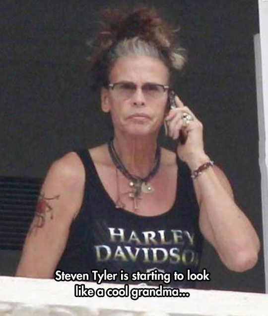 Dude Looks Like A Lady <-- LMAO exactly what I was thinking! Steven Tyler is the man though, rock on ;)