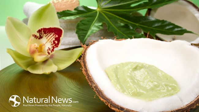 Coconut oil: A true Magic Bullet - Natural News Blogs - http://blogs.naturalnews.com/coconut-oil-true-magic-bullet/
