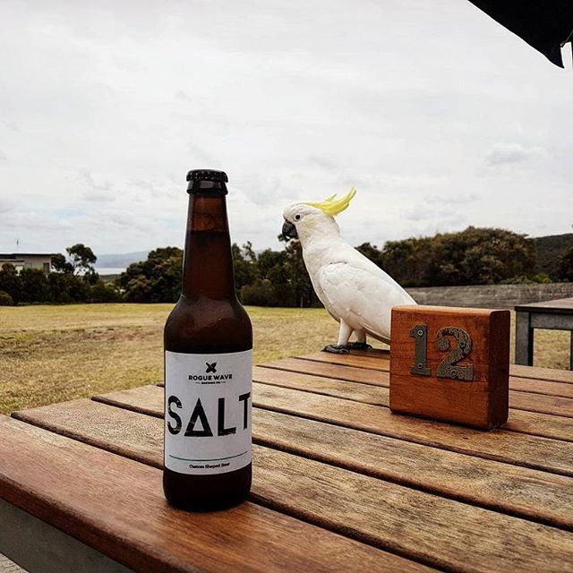 Aireys Pub on the Great Ocean Road has a beer garden with filtered ocean views and most importantly its home to the Rogue Wave Brewery! I love a good craft beer  - Aireys Inlet, Victoria, Australia