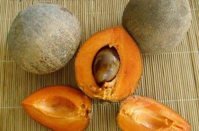zapote-fruit