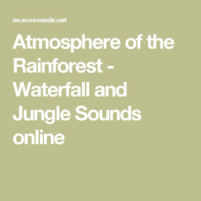Atmosphere of the Rainforest - Waterfall and Jungle Sounds online