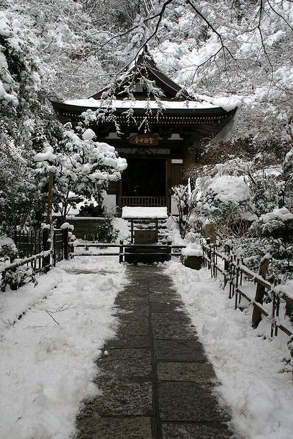 #winter in #Kamakura, #Japan. I'd have to safely say Kamakura is my favorite city in the world. I doubt there is anyplace more beautiful, quiet, surprising, or inviting.