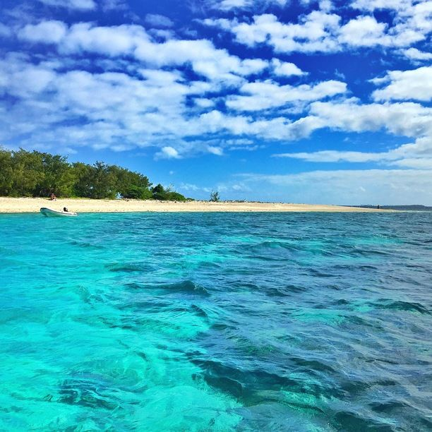 Lady Musgrave Island, Queensland, Australia - Welcome to Paradise! ...