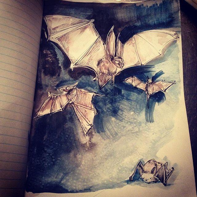 Drawloween2016. Day 22. Bats. So super ahead of myself ... Too many things to do in the next few days so extra now... #bats #illustration #ink #drawloween2016 #mabsdrawlloweenclub #mabgraves #irishillustrator #igersdublin